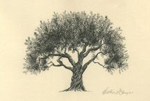 Olive Oil Tree Art  / Examples where the beauty of olive trees were captured by outstanding artists from all different time periods.