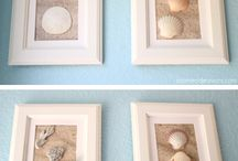 shells  & driftwood- conchiglie
