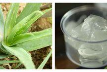 Aloe Vera mixture