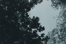 ARTISTA | NATALIA DAMIAO / Aqui você encontra as artes dA artista NATALIA DAMIAO, disponíveis na urbanarts.com.br para você escolher tamanho, acabamento e espalhar arte pela sua casa.  Acesse www.urbanarts.com.br, inspire-se e vem com a gente #vamosespalhararte