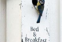 Birdhouses | Vogelhuisjes