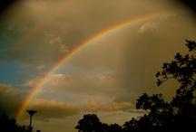 Rainbows / by Christina Sanfilippo