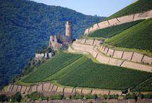 Deutsch Weinberge / German vineyards Viñedos alemanes Deutsch Weinberge vignobles allemands
