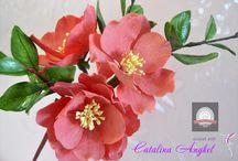 Flores / Elaboracion