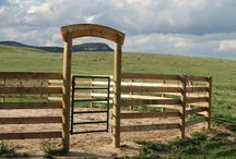 Ranche ideas.