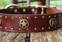 Western Dog Collars / These Western leather collars with cowboy conchos are truly unique!  Choose from Texas Ranger stars, longhorn conchos, floral conchos, and Buffalo nickel conchos to reflect the region and history of the west.
