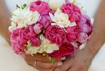 Bridal Bouquets   White & Hot Pink