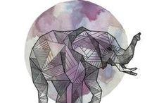 Elephant / il y a des animaux à part: l' éléphant, le poulpe, la seiche, l'alpaca, le scarabée doré un jour ils m'ont parlé, je les ai écouté,  j'ai su.  Je n'ai pas encore rencontré de dauphin, de tortues marines, de baleines....