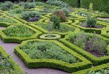 Formell trädgård