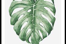 Botanische bladeren