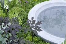 woda w ogrodzie/water in garden