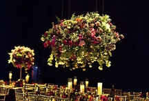SUSPENDED CENTERPIECES / by Paul Brummer