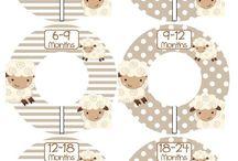 Lamb nursey
