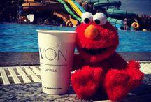Elmo's travels / Маленькие радости большого Elmo