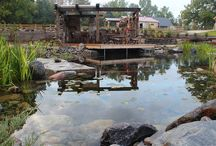 Waterfall Farm