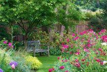 Garden design for Kororoit Ct