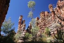 Northern Territory • Australia / by Visit Australia