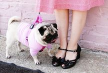 pug love / by Starr Nordgren