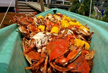 Crab Boil & Seafood Themed Events / Shrimp, crabs, oysters and more. Louisiana seafood is a reason to celebrate / by Mardi Gras Outlet