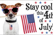 """Happy Independence Day / Independence Day is annually celebrated on July 4 and is often known as """"the Fourth of July""""."""