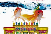 BALIK YEMLERİ - FISHFOOD