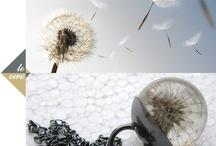 Jewellery / by Beata Ce