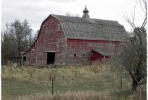 Barns / by Kris Price