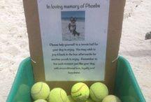 Pet Memorials Ideas