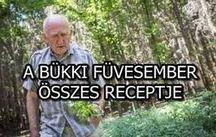 gyuri bácsi