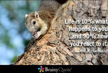 Best quotes / BEST quotes about life, psychology, changes and positive thinking,