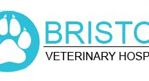 "Animal Hospital Mississauga / ""Bristol Veterinary Hospital"" provides superior quality pet medical services. We, at Bristol deliver affordable services and also cover a wide range of pet health aspects. Our experienced staff is expert in performing complex surgical procedure. Contact us today to know more about our veterinary services."