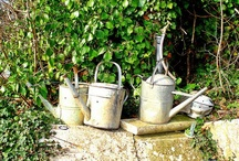 GARDEN: VINTAGE WATERING CANS / Gardening requires lots of water — most of it in the form of perspiration. ~Lou Erickson