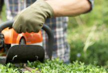 Tuintips / Tips om uw tuin klaar te maken voor elk seizoen!