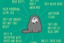 Cat Facts
