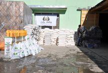 Bayat Foundation / Bayat Foundation | Afghanistan Relief Organization