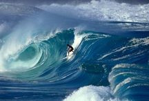 Surf's Up / by Omar Kattan