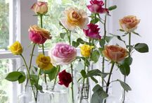 DECORATE WITH FLOWERS AND PLANTS