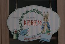 Peter Rabbit temalı parti malzemeleri