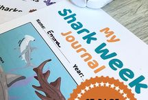 All About Sharks for Homeschool / Shark lesson plans, unit studies, activities, printables, ideas, and snacks. Plus books and videos for learning about sharks.
