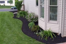 Landscaping/Exterior
