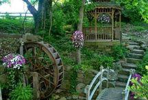 Lucy garden ideas