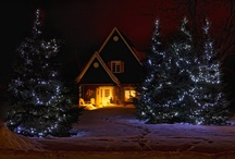 Christmas Lights / by Dennis Lester