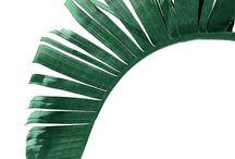 листья тропикал