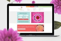 Client #websites