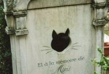 Pet Cemetery / by Dianne Word