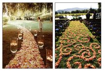 Down the Aisle - Aisle Markers, Runners & Decor / Visit our other boards - All dedicated to Everything Wedding!