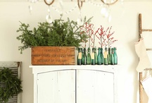 GARDEN THERAPY: Winter / Holiday / Ideas for seasonally-focused planters, wreaths, and decor for celebrating winter. / by Stephanie @ Garden Therapy
