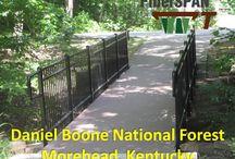 Daniel Boone National Forest, Kentucky / Composite Advantage trail bridge