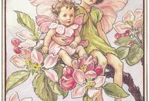 Flower fairies, illustrazioni
