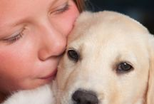 Doggie Health / by Some Puppy To Love